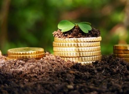 Агростраховий пул хочуть створити в Україні