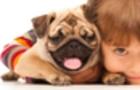 Домашні тварини сприяють розвиткові і здоров'ю дітей