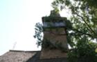 На Закарпатті столітній дуб впав на древню дерев'яну церкву (ВІДЕО)