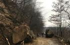 Рятувальники розчистили дорогу від кам'яних брил. Рух транспорту частково відновлено (ФОТО)
