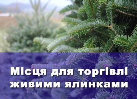 У Мукачеві та Ужгороді влада визначила, де будуть продаватися ялинки