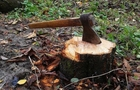 На Перечинщині правоохоронці викрили незаконну вирубку дерев у заповіднику