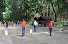В Ужгороді відбувся масштабний турнір з петанку (ФОТО)