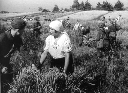 Як комуністи заганяли закарпатців у колгоспи