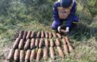 Поблизу Ужгорода виявили 33 артилерійські снаряди часів Другої світової війни