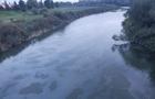 Річка Уж в межах Ужгорода вкрита плямами невідомого походження. Мерія терміново звернулася до ДСНС