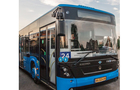 У день вшанування померлих в Ужгороді збільшать кількість рейсів автобусів до кладовищ (РОЗКЛАД)