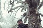 Чому на Закарпатті громадський контроль над лісами взяли на себе колишні лісівники-мафіозі
