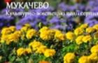Що цікавого буде в Мукачеві в останній місяць літа (ПРОГРАМА)