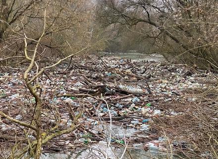 На Латориці, в межах Мукачівського району, утворився величезний затор зі сміття, який наразі неможливо ліквідувати