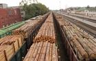 Закарпатські лісівники не відправляють деревину за кордон