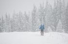 На Закарпатті вдалося врятувати загубленого лижника з Харкова