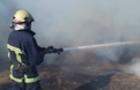 В Ужгороді згорів будинок. У господарки обгоріло обличчя