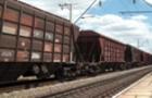 Трагедія на Закарпатті: Вантажний потяг збив жінку, яка померла у реанімації