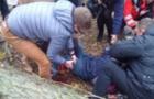 Ужгородські комунальники, через халатність яких дерево покалічило дівчинку, відбулися штрафом