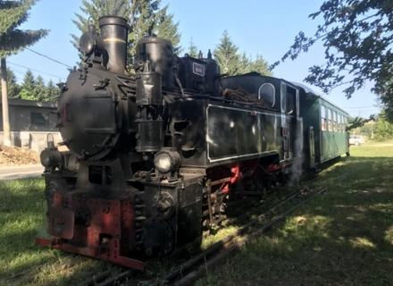 На Боржавській вузькоколійці в Закарпатті будуть їздити вагони з туалетами та кондиціонерами.