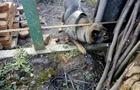 У Мукачеві службовий собака знайшов крадені речі