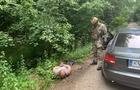 На Берегівщині силовики затримали озброєних наркоторговців і вилучили наркотики на півмільйона гривень
