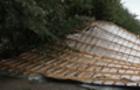 Результати буревію: Впало 6 дерев та знесло дах багатоквартирного будинку в Ужгороді (ВІДЕО)