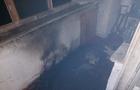 У Хусті евакуювали мешканців багатоквартирного будинку через пожежу