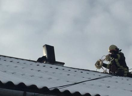 У Тячеві перед Різдвом рятувальники знімали кота з даху