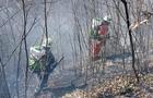 Пожежники гасили вогонь на території Карпатського біосферного заповідника