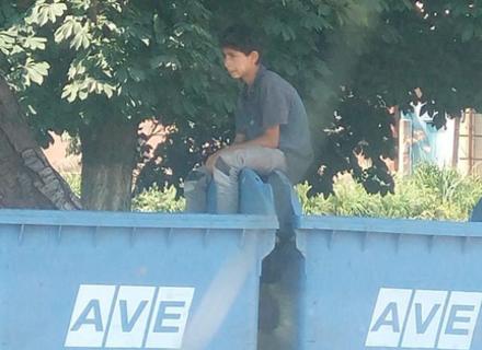 В Ужгороді група малолітніх циган замотали собаці голову поліетиленовим пакетом і викинули в смітник
