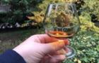 В Ужгороді визначили кращі українські коньяки, вино і шампанське
