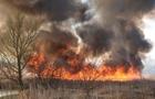 У Закарпатській ОДА створили Координаційну групу щодо попередження пожеж в екосистемах