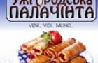 Посварилися: В Ужгороді два однакових фестивалі пройдуть одночасно в різних місцях