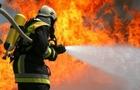 Всього за 12 днів цього року на Закарпатті сталося вже 43 пожежі. Загинули двоє людей