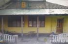На Мукачівщині троє неповнолітніх підлітків пограбували магазин