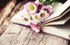 7 книжкових новинок весни, на які варто звернути увагу