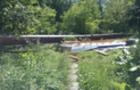 Під час бурі на Хустщині повалило 50 дерев та багатотонну трубу
