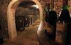 Закарпатські винороби радіють прийнятому Верховною Радою закону про мале виноробство
