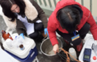 Держекоінспекція отримала підтвердження про забруднення води річки Тиса важкими металами