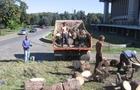 Власники земельних ділянок біля драмтеатру в Ужгороді виграли суд і можуть почати забудову