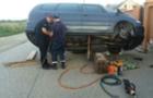 Закарпатським рятувальникам довелося розібрати пів автомобіля, щоб врятувати цуценя