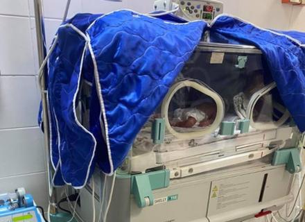 В Ужгороді лікарі успішно здійснили операцію з порятунку трійні