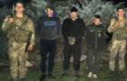 На Берегівщині прикордонники затримали пачкарів, які перенесли сигарети в Угорщину і вже поверталися назад з форинтами