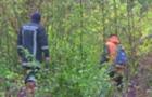 На Перечинщині майже 20 людей шукали в лісі 9-річну дівчинку, яка заблукала