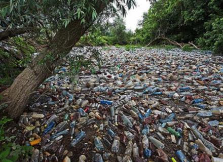 У Тису потрапили тонни сміття зі стихійних сміттєзвалищ в прибережній зоні (ВІДЕО)