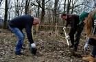 Як на Закарпатті чиновники та діти ліс висаджували (ФОТО)