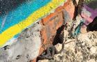 В Ужгороді змії гріються в підмурку Палацу дітей та юнацтва (ВІДЕО)