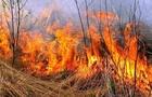 Закарпатці почали спалювати сухостій. Рятувальники попереджають про відповідальність