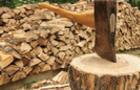 Лісівники Закарпаття радилися, як підготуватися до холодів і забезпечити бюджетні організації дровами