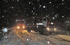 Вантажівки не можуть проїхати через Закарпаття в Румунію через кучугури снігу (ВІДЕО)