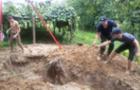 Як на Виноградівщині рятували коня з ями (ФОТО)