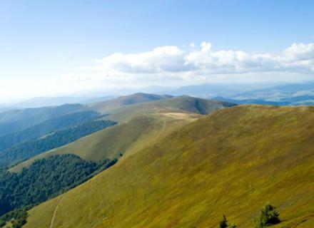 Екологи та вчені вважають злочином знищення Боржавських полонин на Закарпатті гігантськими вітряками