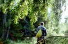 Ночувала в лісі: Рятувальники цілу добу шукали жінку, яка заблукала в лісі на Закарпатті